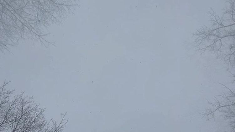 five snowstorms