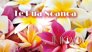 Te Pua Noanoa