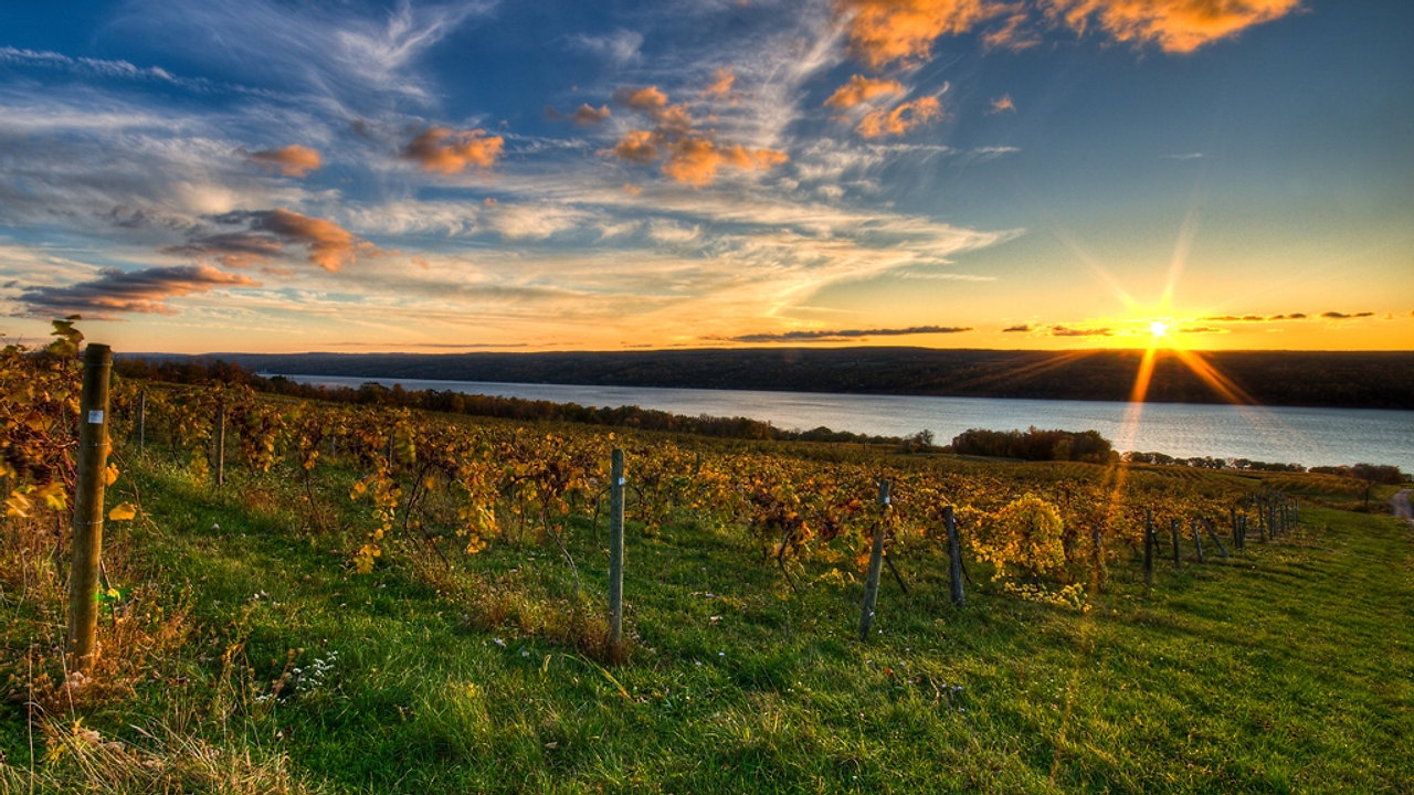 A Taste of Finger Lakes Wine Country