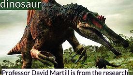 Interview with Professor David Martill