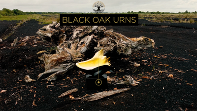Bog Oak Urns