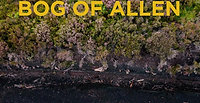 03 Bog Oak Urns Piece Top Down b 4k