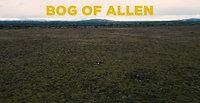 04 Bog Oak Urns Brian Zoom b 4k