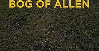 02 Bog Oak Urns Brian Spiral b 4k