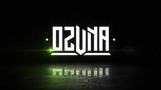 Ozuna Concert Opening