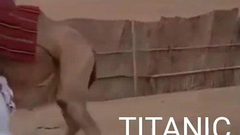 Titanic - Part 2