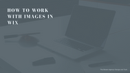 How to work with images in Wix