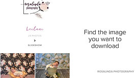 How to download your digital images from your online gallery