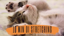 10 Minuti di stretching