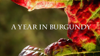 A Year in Burgundy: Official Trailer
