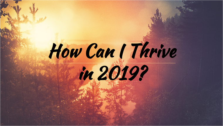 How Can I Thrive in 2019?