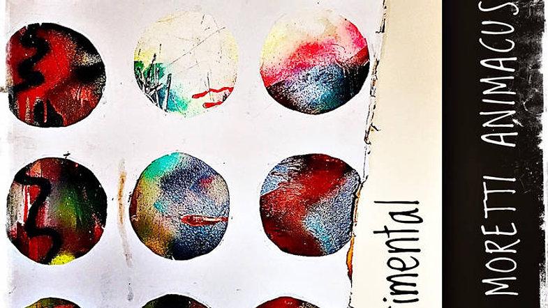 """Experimental"" New Album"