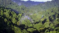 Terra X - Kongo Ein Fluß Zwei Welten