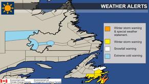 Newfoundland Storm Update