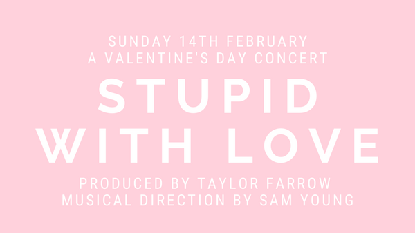 Stupid With Love Concert