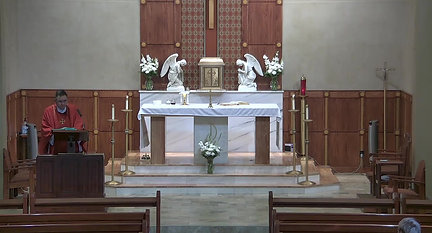 Holy Mass, 1st Saturday June 5, 2021_homily clip