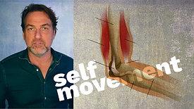 3 - The Sense of Self Movement