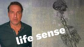 2 - The Life Sense