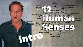 0 - The 12 Human Senses - Introduction