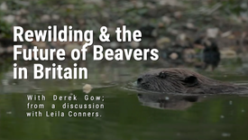 Derek Gow on Rewilding and Bringing Back the Beaver to Britain