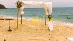 Jenny & Harry's Wedding