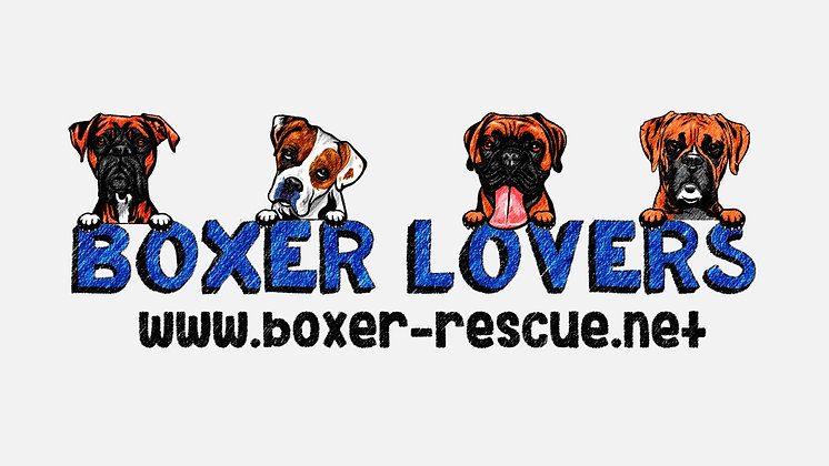 BOXER LOVERS FOSTER TEAM