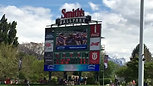 Salt Lake Bees (Angels AAA) Shout Out