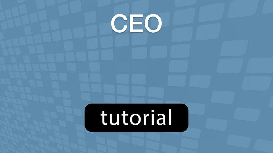 GoVenture CEO Tutorial Video