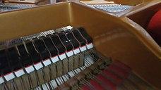 Rumbling Hammer (Grand Piano)