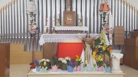 Záznam sv. omše z Veľkonočnej nedele