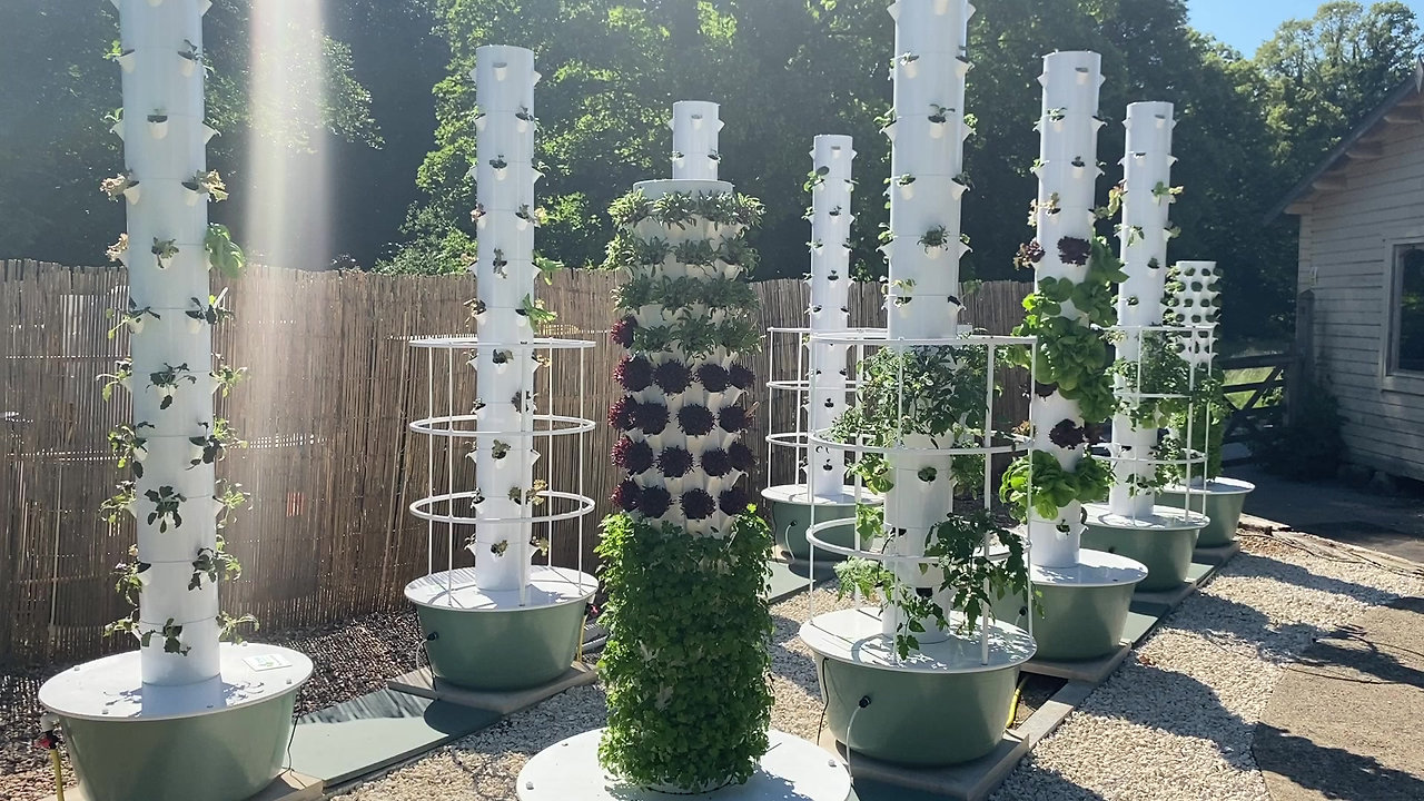 Tower Garden at Applegarth