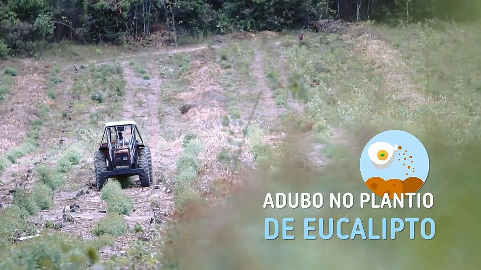 BRK Ambiental: Jaguaribe