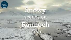 Winterwatch: Snowy Scenes on Rannoch Moor