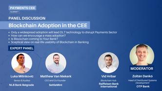 17. Blockchain Adoption in the CEE