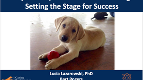 Part 2 with Dr. Lucia Lazarowski (Early puppy development for Detection Dogs)