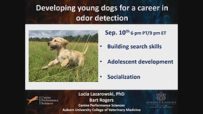 Part 3 w/ Lucia Lazarowski (Developing Puppies and young dogs for Detection work)