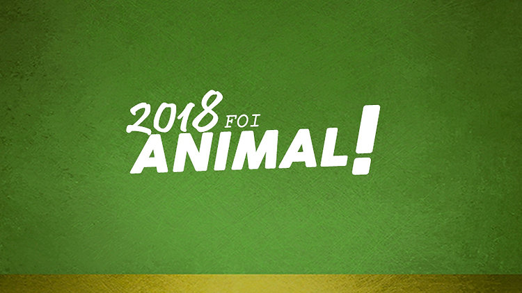 2018 foi ANIMAL!