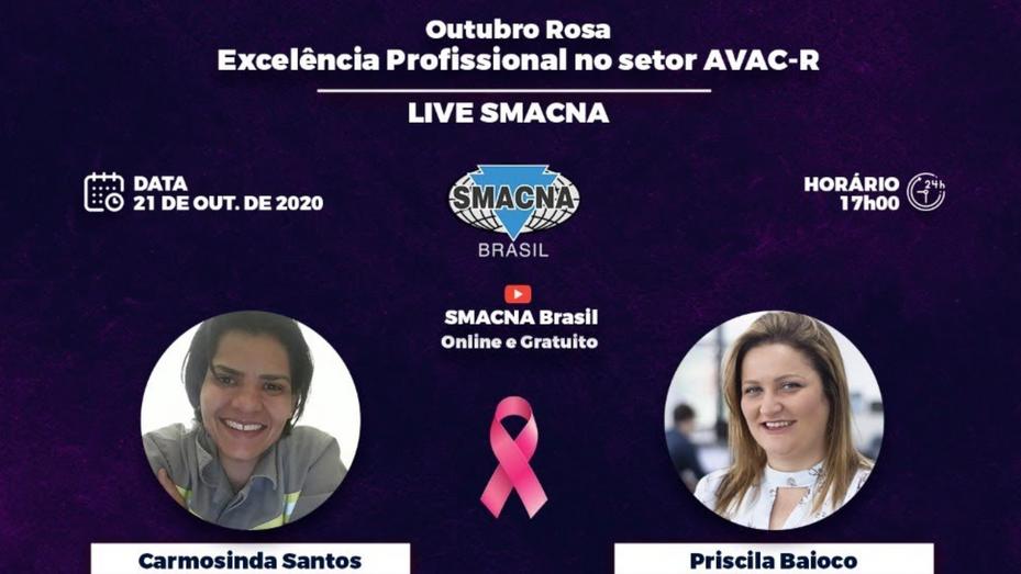 Excelência Profissional no setor AVAC-R Carmosinda Santo - Priscila Baioco