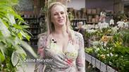 Tuintip 'kamerplanten en terrarium' voor 'WONEN' - ROB TV