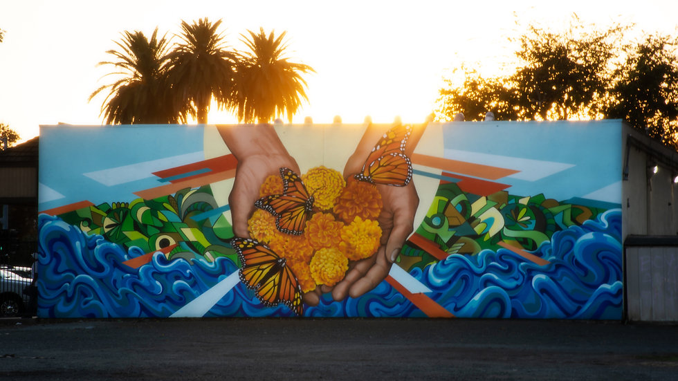Lava Laundry Mural Project