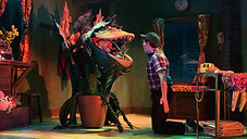 Little Shop of Horrors Highlights