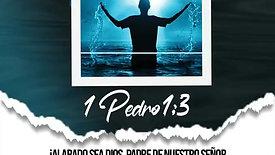 Verso 38
