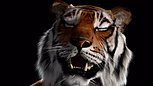 One or Two TIgers by Ho Tzu Nyen (visual effects by Mimic Productions)