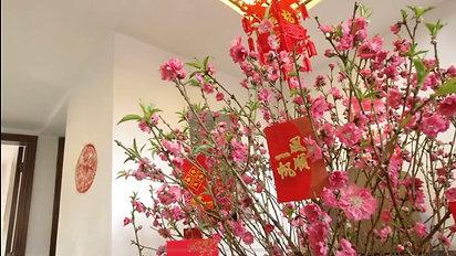 Lunar New Year House Tour