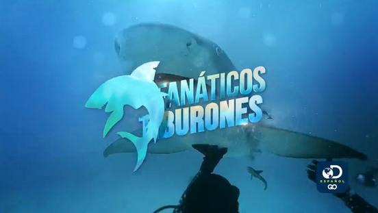 Fanáticos de Tiburones