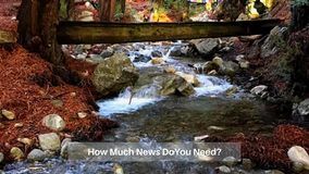March 26 :: How Much News Do You Need?