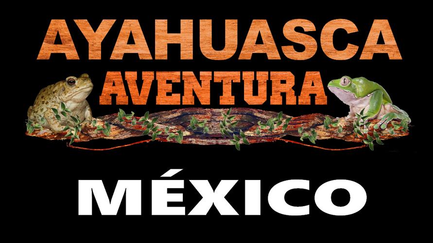 Ayahuasca Aventura México