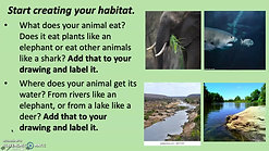 Habitats 1st Monday