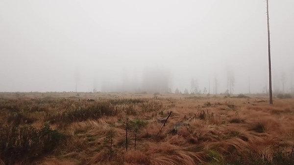 Пролёт в туманном поле