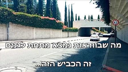 שלושה דברים שלא ידעתם על הגן הבהאי בחיפה